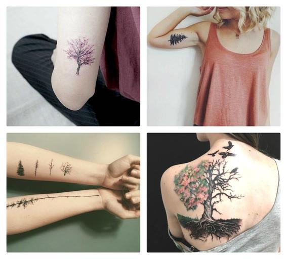 tatuajes de arboles 4