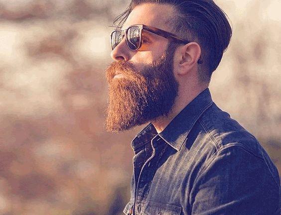 tipos de barba 22
