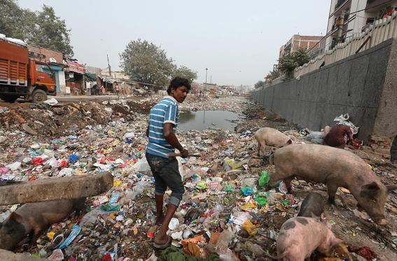 india prohibe el uso de plasticos desechables 1