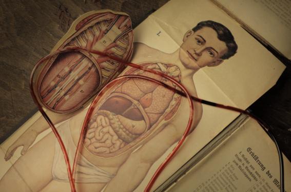 experimentos que aseguran regresarle la vida a los muertos 2