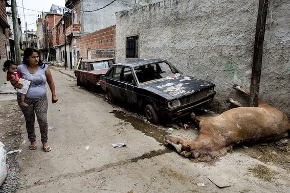 fotografias de valerio bispuri 11