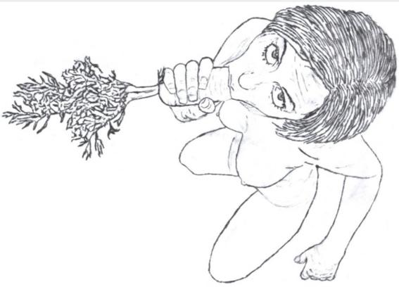 ilustraciones de bill sussman 4