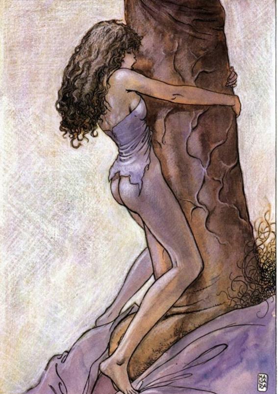 ilustraciones de milo manara 21