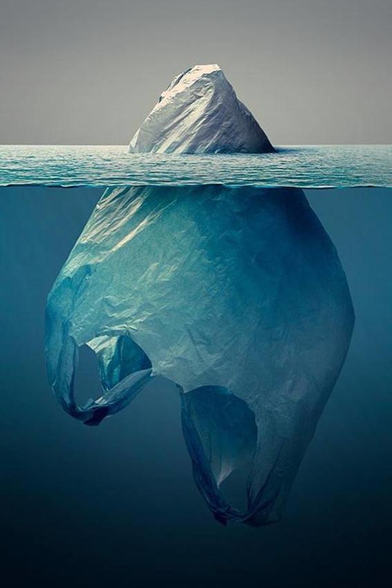 cinco maneras efectivas de deshacerte del plástico 1