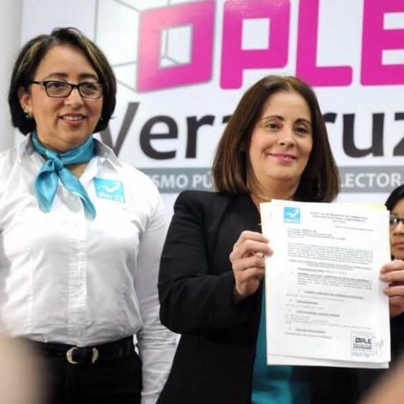 aspirantes a gobernador de veracruz elecciones 2018 13