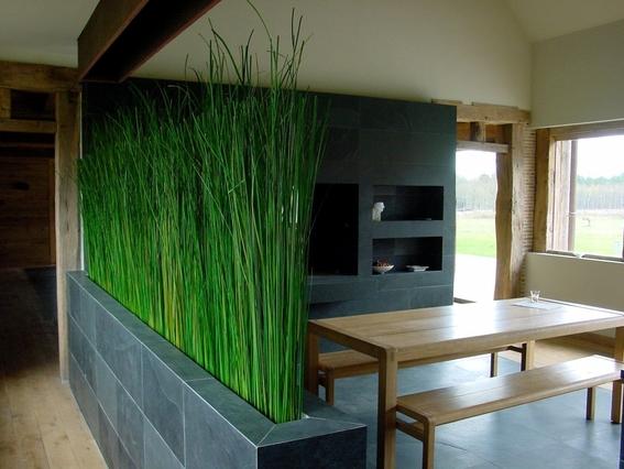 decoracion con plantas de interiores 5