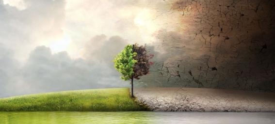 documentales sobre cambio climatico 1