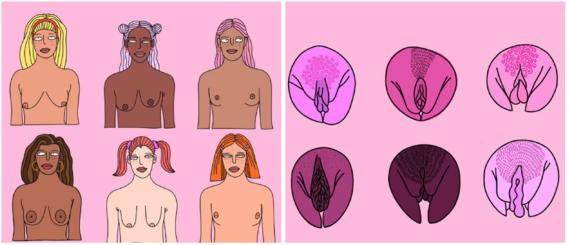 ilustraciones de jennifer rose 1