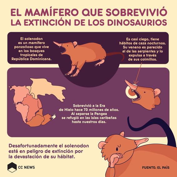 solenodon mamífero que se extinguió 1