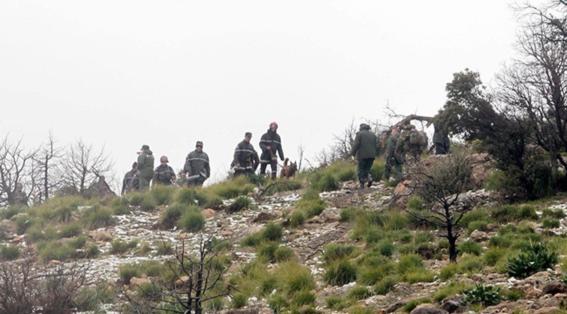accidente aereo argelia no hay sobrevivientes 1