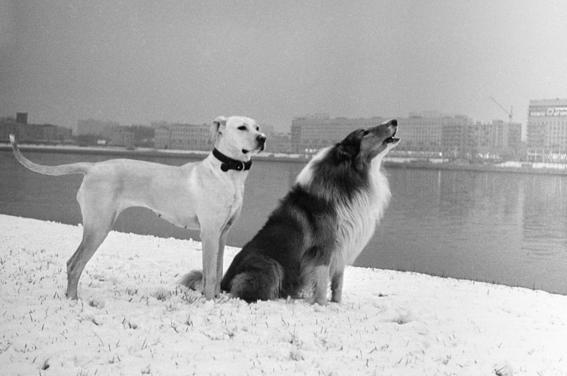 photos of soviet russia story 5