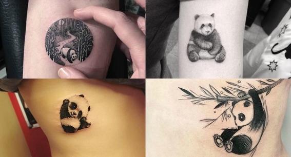 tatuajes de oso panda 4