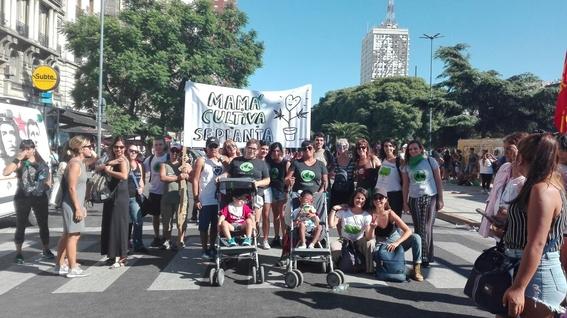 mama cultiva argentina organizacion cultivo de marihuana 2