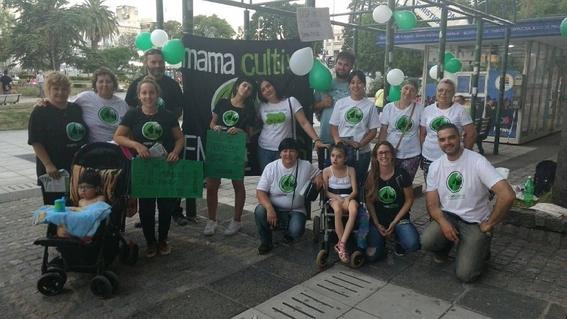 mama cultiva argentina organizacion cultivo de marihuana 5