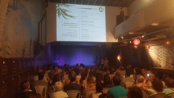 mama cultiva argentina organizacion cultivo de marihuana 6
