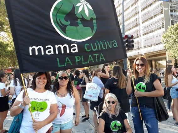 mama cultiva argentina organizacion cultivo de marihuana 7