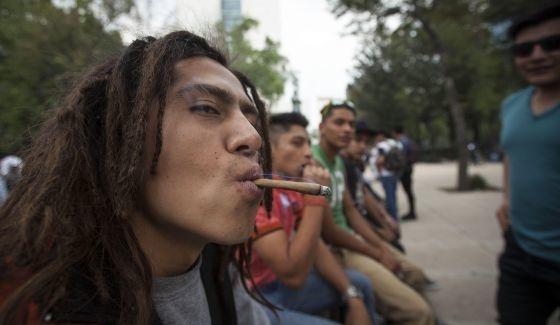 zavala esta en contra de legalizacion de marihuana 2