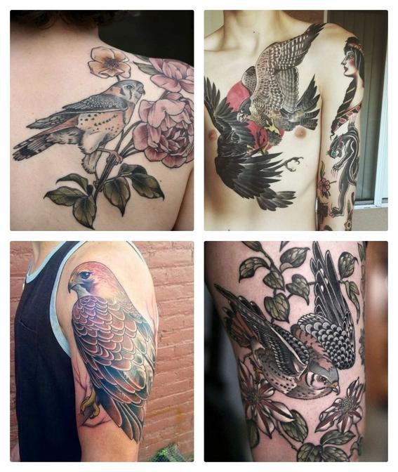 tatuajes de halcones 2
