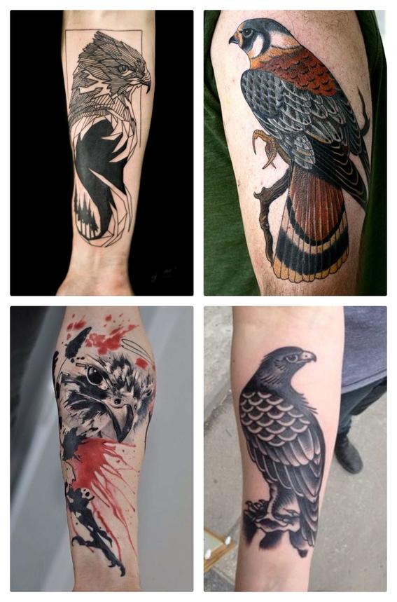 tatuajes de halcones 4