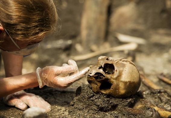 una excavacion en dinamarca revela la mayor masacre de nuestra era 1