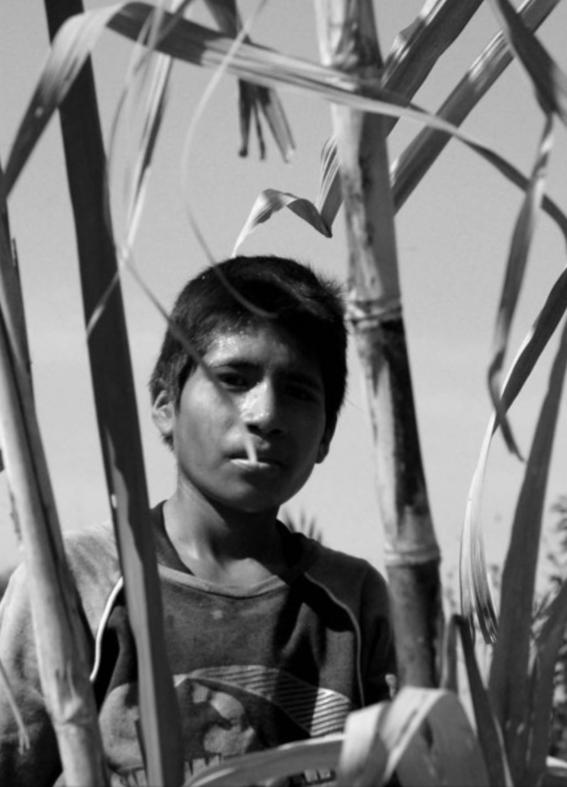 fotografias de joseph sorrentino 17