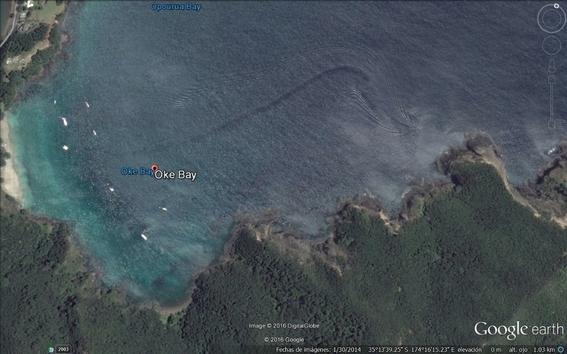 monstruos marinos captados en google maps 2