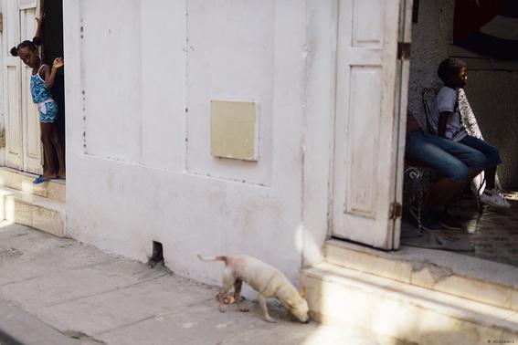 como es crecer en las calles de cuba en 15 fotografias de raquel chicheri 5