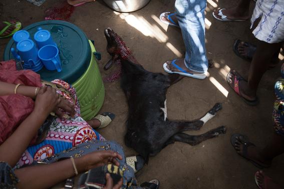 rituales vudu en africa fotos james hopkirk 4