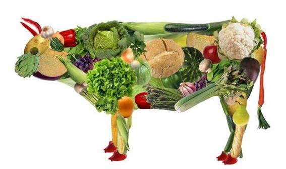 la dieta que no deja huella ambiental 2