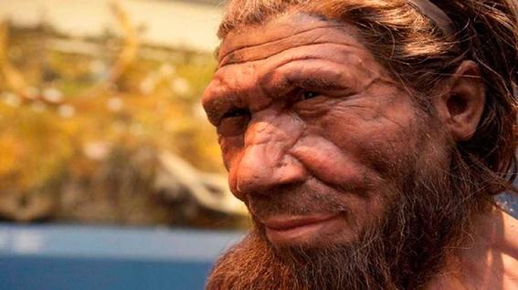 siguen vivos los neandertales 1