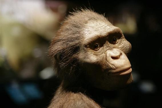 siguen vivos los neandertales 2