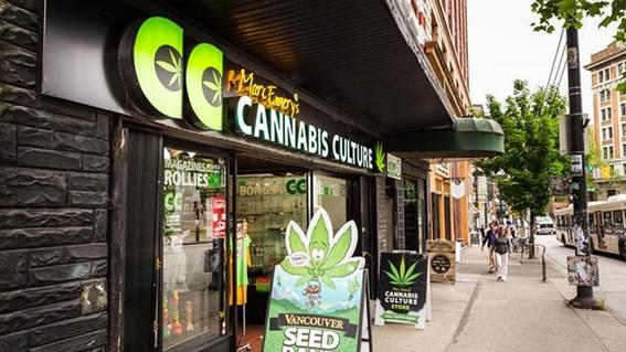 canada esta listo para legalizar la marihuana recreativa 3