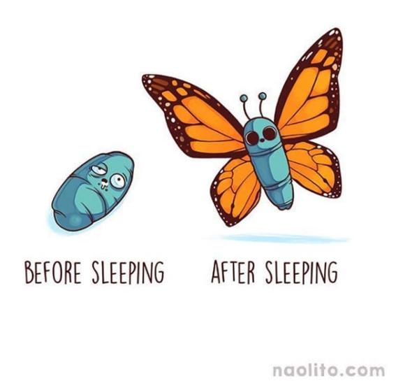ilustraciones de naolito 19