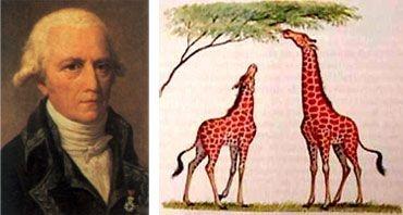 teorias de la evolucion 1