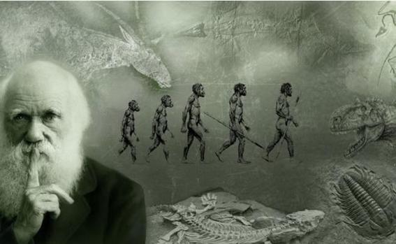teorias de la evolucion 2