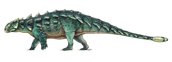 hallan fosiles de dinosaurio acorazado en desierto de coahuila 1