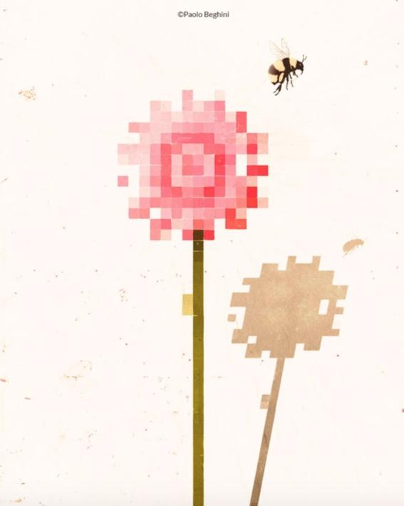 beghini illustrator 10
