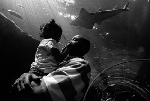 fotos de zun lee sobre los padres solteros en estados unidos 11