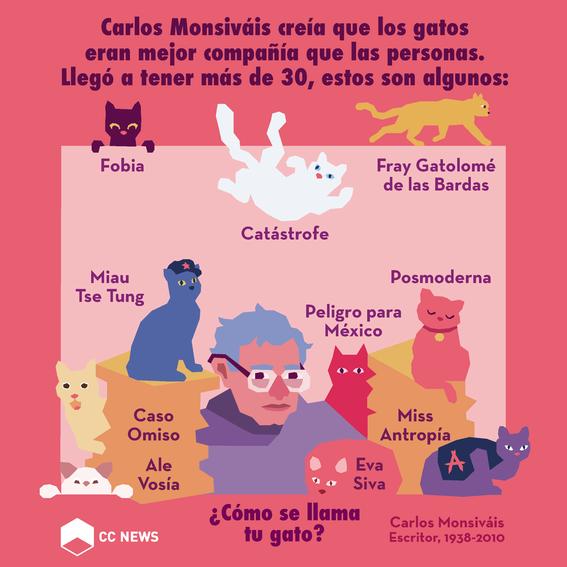los gatos de monsivais 1