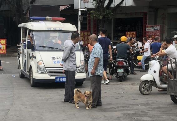 festival chino de carne canina 4