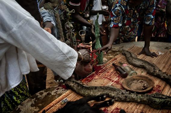fotografias para ver de cerca un verdadero ritual vudu en africa 31