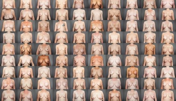 evolucion de los pezones femeninos para amamantar mejor 1