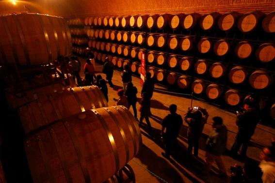 ruta del queso y vino vendimia en queretaro 4