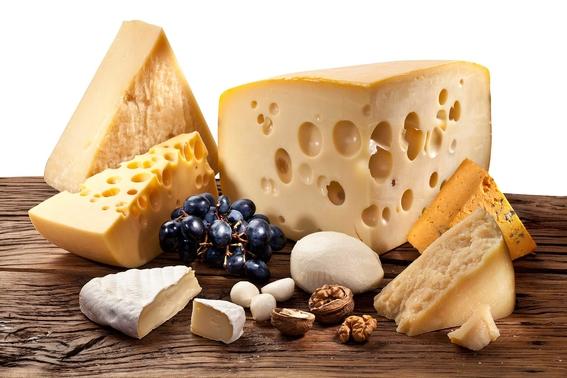 ruta del queso y vino vendimia en queretaro 6