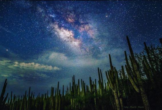valle de tehuacancuicatlan el sitio mexicano que la unesco nombro patrimonio de la humanidad 4