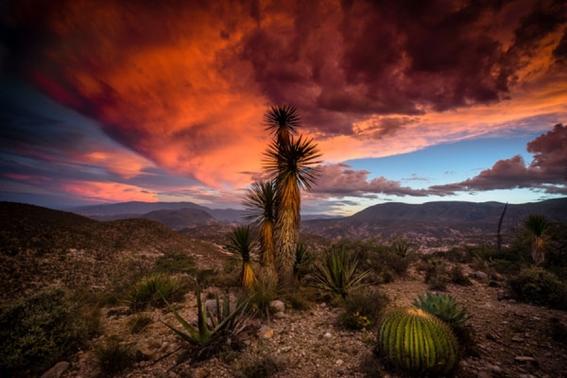 valle de tehuacancuicatlan el sitio mexicano que la unesco nombro patrimonio de la humanidad 6