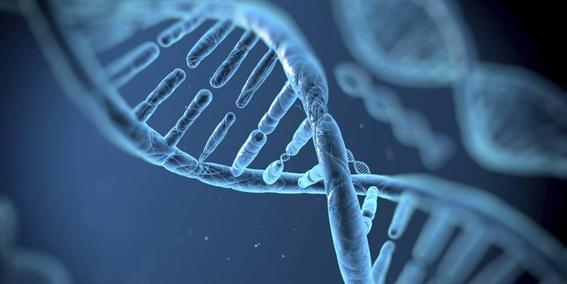 crispr edicion genetica 6