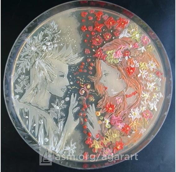 arte con hongos virus y bacterias 2
