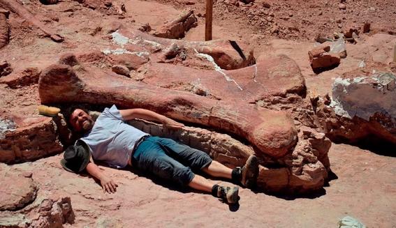 descubren dinosaurio de 200 millones de anos en argentina 2