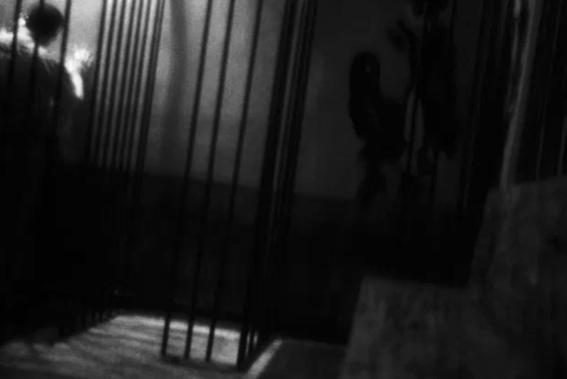 fotografias de sexo de omar gamez 3